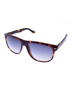 Ochelari de soare Kotys Barbat Ovali KTS027 C2